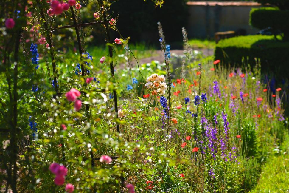 Les plus beaux jardins visiter dans le loiret tourisme loiret - Les plus beaux jardins des chateaux de la loire ...
